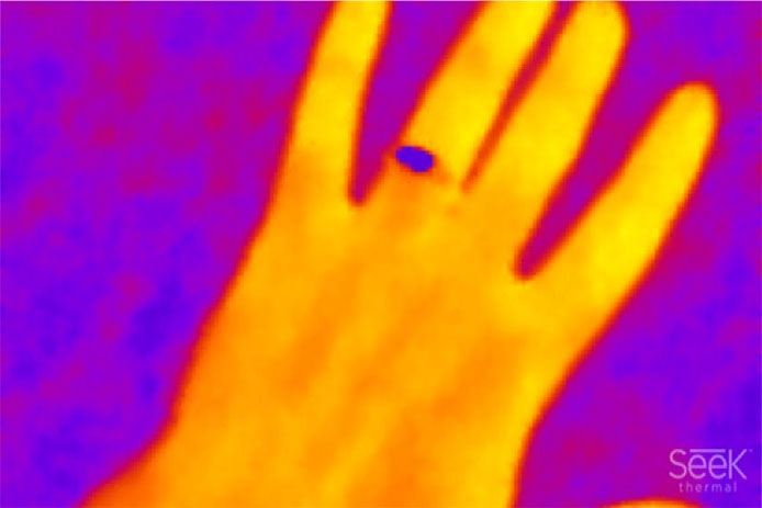 Seek Thermal infrared camera